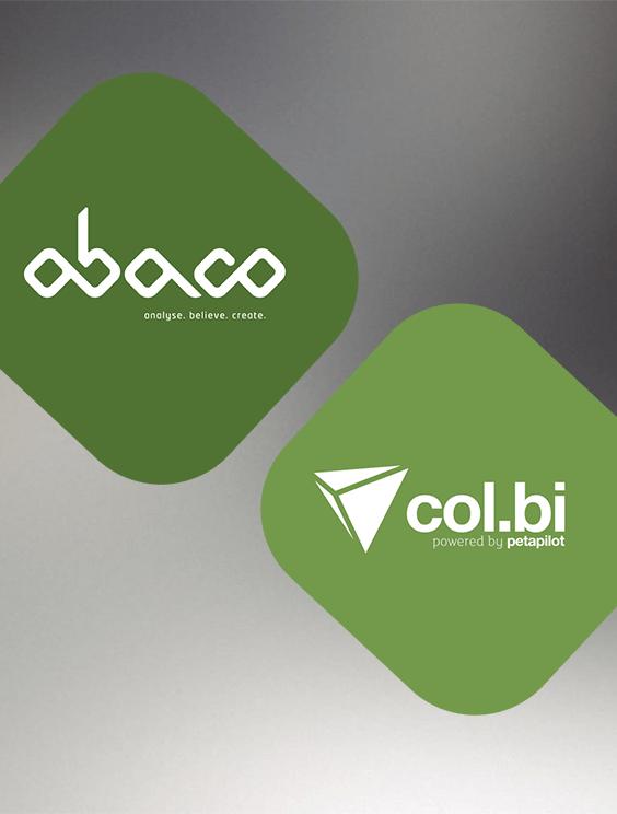 Col.Bi - Sofwtare para Auditoria Financeira