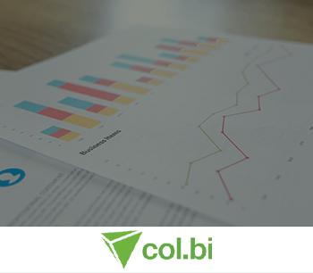 Col.Bi - Software para Auditoria Financeira